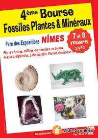 4. Austausch von Fossilien, Pflanzen und Mineralien