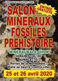 5. Stipendium Ausstellung für prähistorische Mineralien und Fossilien