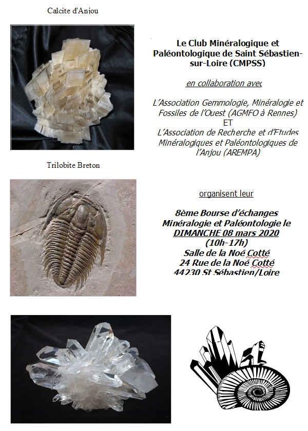 8. Austausch von Mineralien und Fossilien