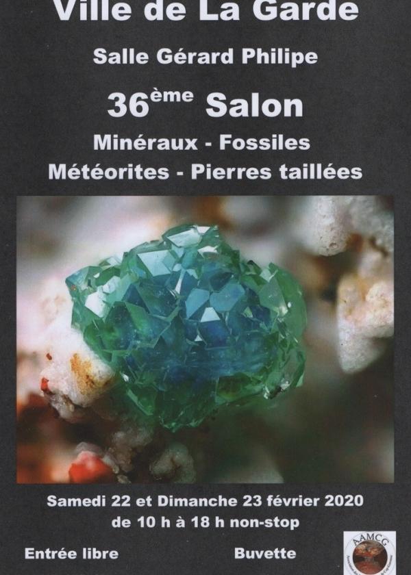 36. Mineral- und Fossilienaustausch