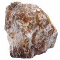 Dendritenopal